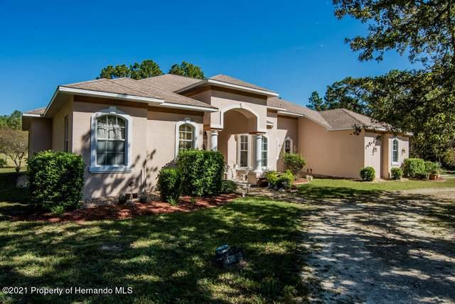 11425 Chickadee Road, Brooksville, FL 34614 (MLS #2220300) :: Dalton Wade Real Estate Group