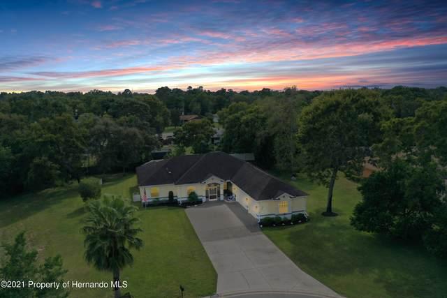 11356 Silverwood Court, Spring Hill, FL 34609 (MLS #2220366) :: Dalton Wade Real Estate Group