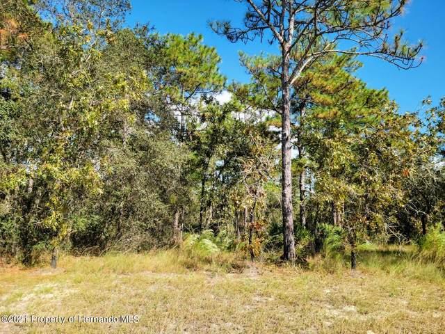 16396 Manor Road, Weeki Wachee, FL 34614 (MLS #2220368) :: Dalton Wade Real Estate Group