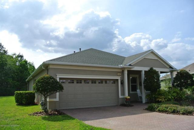 5061 Endview Pass, Brooksville, FL 34601 (MLS #2182702) :: The Hardy Team - RE/MAX Marketing Specialists
