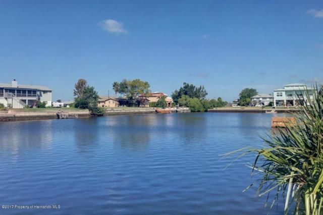 0 Lily (Lot 11) Dr., Hernando Beach, FL 34607 (MLS #2187203) :: The Hardy Team - RE/MAX Marketing Specialists