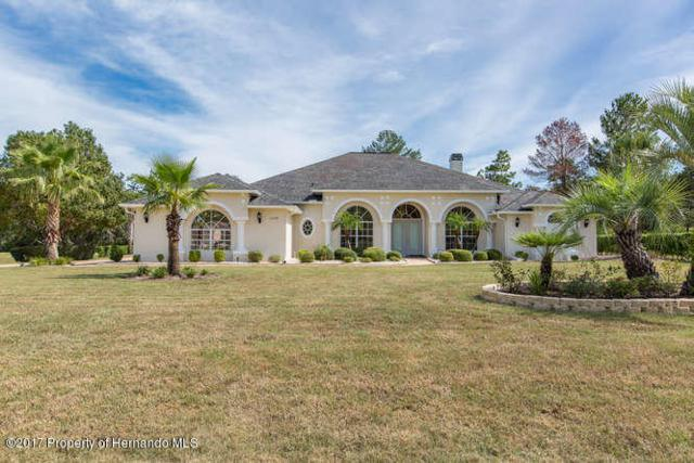11376 Warm Wind Way, Weeki Wachee, FL 34613 (MLS #2187538) :: The Hardy Team - RE/MAX Marketing Specialists