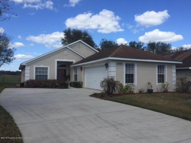 31325 Satinleaf Run, Brooksville, FL 34602 (MLS #2187807) :: The Hardy Team - RE/MAX Marketing Specialists