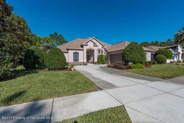5381 Leather Saddle, Brooksville, FL 34609 (MLS #2188487) :: The Hardy Team - RE/MAX Marketing Specialists