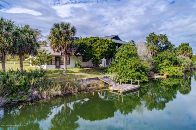 3396 Holly Springs Drive, Hernando Beach, FL 34607 (MLS #2188820) :: The Hardy Team - RE/MAX Marketing Specialists
