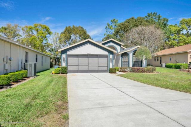 11423 Kingstree, Spring Hill, FL 34609 (MLS #2189629) :: The Hardy Team - RE/MAX Marketing Specialists