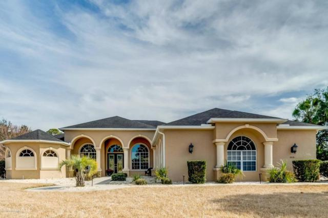 10118 Breezy Pines, Weeki Wachee, FL 34613 (MLS #2189641) :: The Hardy Team - RE/MAX Marketing Specialists