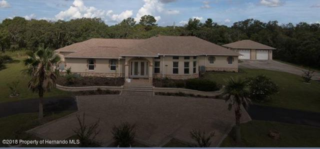 10030 Orchard Way, Spring Hill, FL 34608 (MLS #2189828) :: The Hardy Team - RE/MAX Marketing Specialists