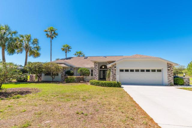 11009 Woodland Waters Boulevard, Weeki Wachee, FL 34613 (MLS #2191587) :: The Hardy Team - RE/MAX Marketing Specialists