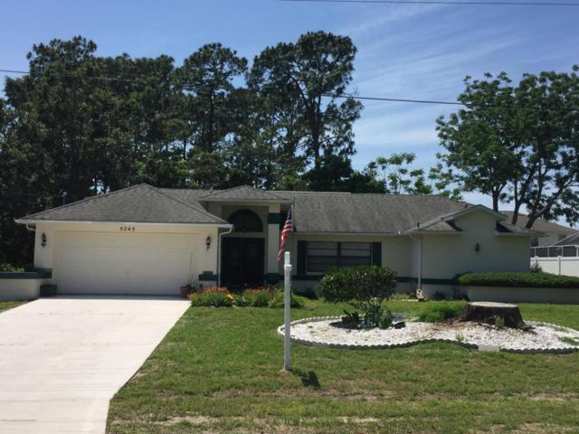 5245 Elwood Road, Spring Hill, FL 34608 (MLS #2191776) :: The Hardy Team - RE/MAX Marketing Specialists