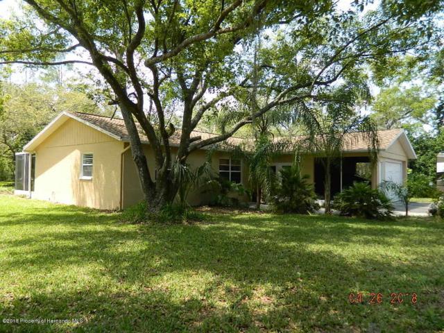13004 Star Road, Brooksville, FL 34613 (MLS #2192021) :: The Hardy Team - RE/MAX Marketing Specialists