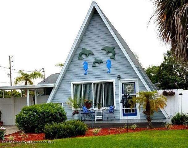 4375 1st Isle Drive, Hernando Beach, FL 34607 (MLS #2192798) :: The Hardy Team - RE/MAX Marketing Specialists