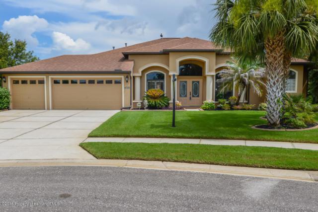 4026 Gevalia Drive, Brooksville, FL 34604 (MLS #2193138) :: The Hardy Team - RE/MAX Marketing Specialists