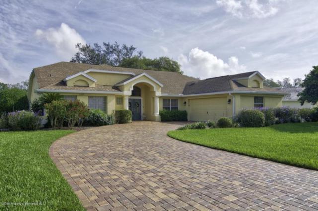 9635 Southern Belle Drive, Weeki Wachee, FL 34613 (MLS #2193163) :: The Hardy Team - RE/MAX Marketing Specialists