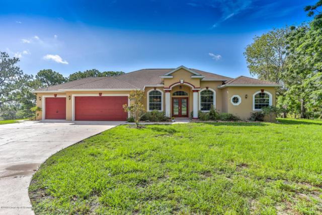 8525 Elgrove Street, Spring Hill, FL 34608 (MLS #2193661) :: The Hardy Team - RE/MAX Marketing Specialists