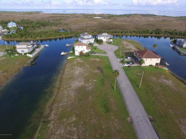 Lot 32 Sheephead Drive, Hernando Beach, FL 34607 (MLS #2193950) :: The Hardy Team - RE/MAX Marketing Specialists