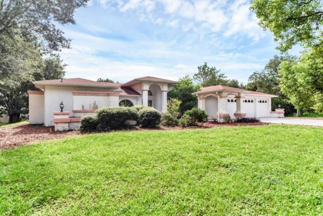 348 Florian Way, Spring Hill, FL 34609 (MLS #2194654) :: The Hardy Team - RE/MAX Marketing Specialists