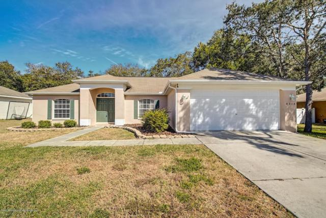 6213 Newmark Street, Spring Hill, FL 34606 (MLS #2195285) :: The Hardy Team - RE/MAX Marketing Specialists