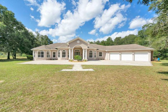 6491 Boxwood Street, Brooksville, FL 34602 (MLS #2196144) :: The Hardy Team - RE/MAX Marketing Specialists