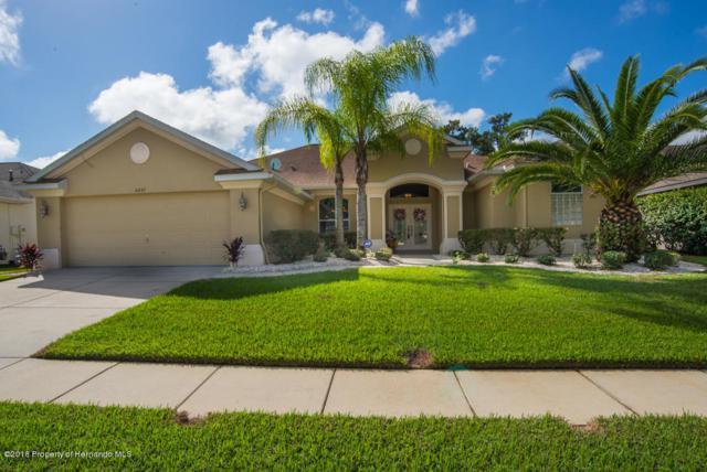 4091 Gevalia Drive, Brooksville, FL 34604 (MLS #2196147) :: The Hardy Team - RE/MAX Marketing Specialists