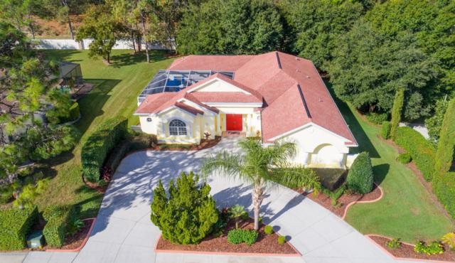 5165 Secretariat Run, Spring Hill, FL 34609 (MLS #2196282) :: The Hardy Team - RE/MAX Marketing Specialists