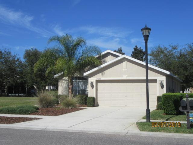 11655 New Haven Drive, Spring Hill, FL 34609 (MLS #2198749) :: The Hardy Team - RE/MAX Marketing Specialists