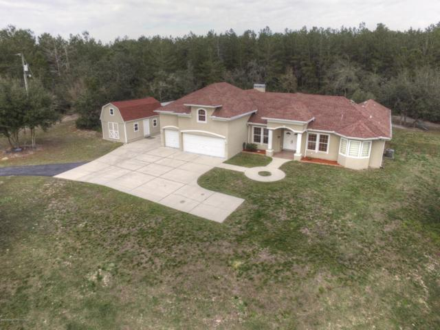 22959 Skyview Circle, Brooksville, FL 34602 (MLS #2199381) :: The Hardy Team - RE/MAX Marketing Specialists