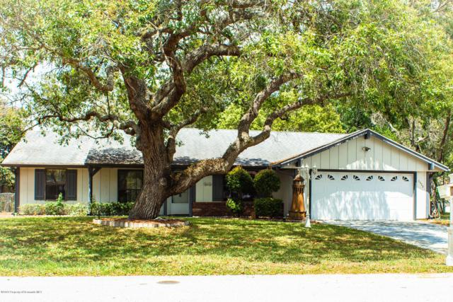 1320 Antilles Lane, Spring Hill, FL 34608 (MLS #2199840) :: The Hardy Team - RE/MAX Marketing Specialists