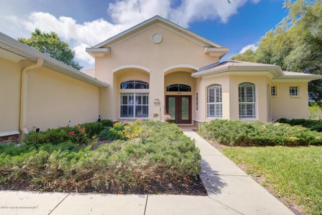 13058 Linzia Lane, Spring Hill, FL 34609 (MLS #2201029) :: The Hardy Team - RE/MAX Marketing Specialists