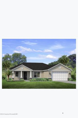 0 Little Farms Drive, Spring Hill, FL 34609 (MLS #2201196) :: The Hardy Team - RE/MAX Marketing Specialists