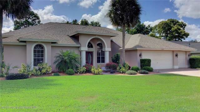9660 Southern Belle Drive, Weeki Wachee, FL 34613 (MLS #2204346) :: The Hardy Team - RE/MAX Marketing Specialists