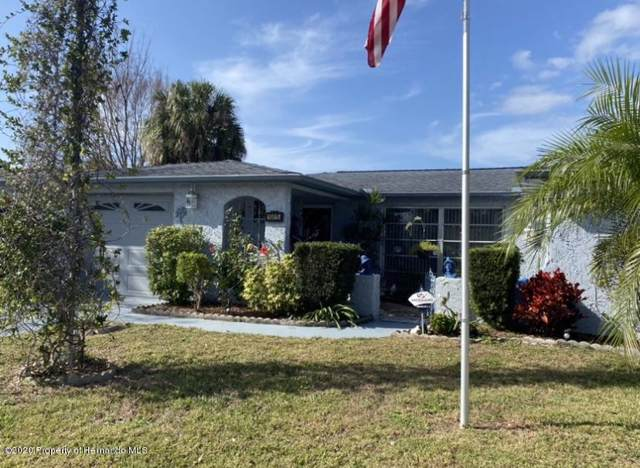 10015 Cherry Creek Lane, Port Richey, FL 34668 (MLS #2206557) :: The Hardy Team - RE/MAX Marketing Specialists