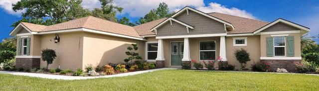 11730 Hawks Nest Trail, Weeki Wachee, FL 34614 (MLS #2211956) :: Premier Home Experts
