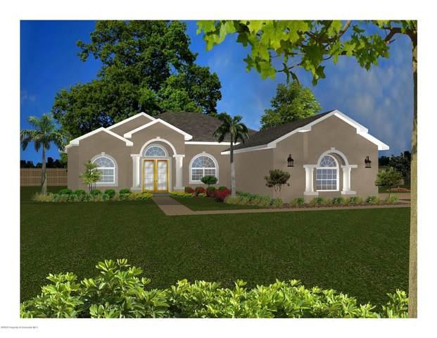 10297 Maybird Avenue, Weeki Wachee, FL 34613 (MLS #2212507) :: Premier Home Experts