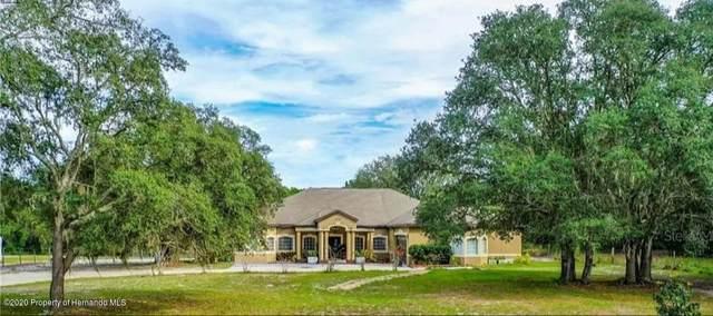 9224 Native Rock Drive, Webster, FL 33597 (MLS #2213014) :: Premier Home Experts