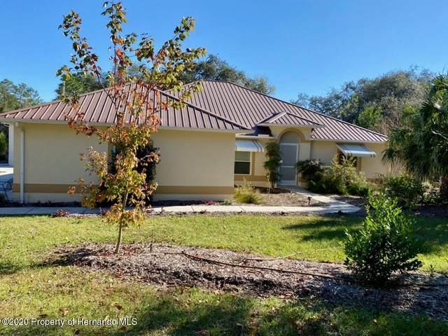 10498 Noddy Tern Road, Brooksville, FL 34613 (MLS #2213716) :: Premier Home Experts