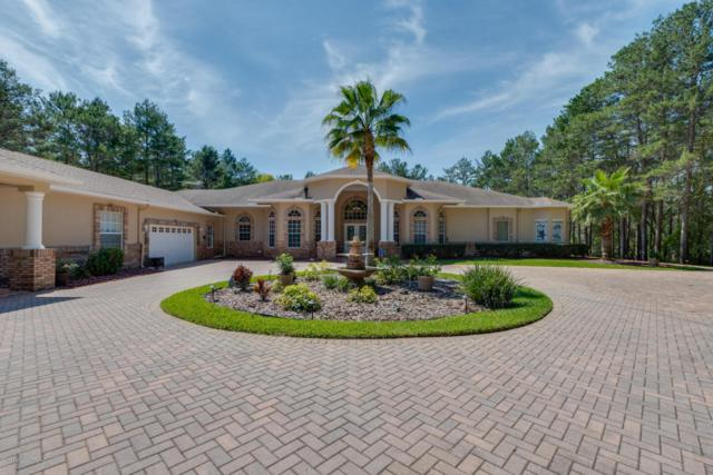 9402 Sand Pines Court, Weeki Wachee, FL 34613 (MLS #2182692) :: The Hardy Team - RE/MAX Marketing Specialists
