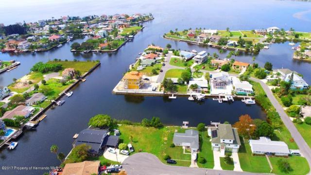 0 8th Isle (Lot 7) Dr., Hernando Beach, FL 34607 (MLS #2187200) :: The Hardy Team - RE/MAX Marketing Specialists