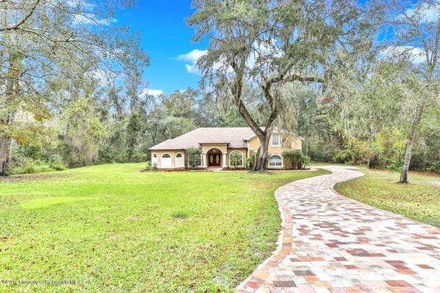 27057 Redfox Drive, Brooksville, FL 34602 (MLS #2188509) :: The Hardy Team - RE/MAX Marketing Specialists