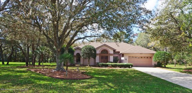 4506 Rachel Boulevard, Spring Hill, FL 34607 (MLS #2190407) :: The Hardy Team - RE/MAX Marketing Specialists