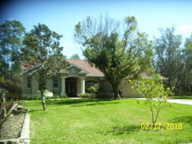 9223 Long Lake Avenue, Weeki Wachee, FL 34613 (MLS #2190523) :: The Hardy Team - RE/MAX Marketing Specialists
