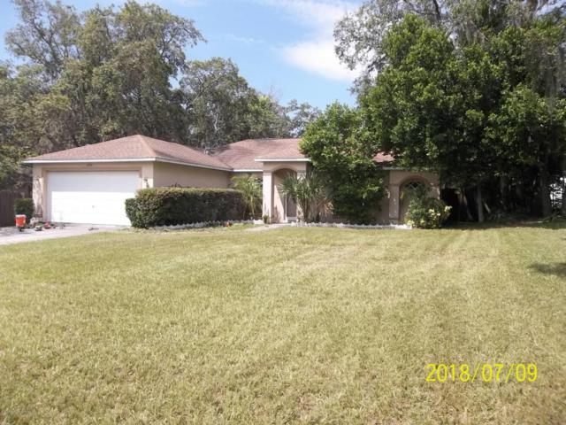 6290 Hillview Road, Spring Hill, FL 34606 (MLS #2193755) :: The Hardy Team - RE/MAX Marketing Specialists