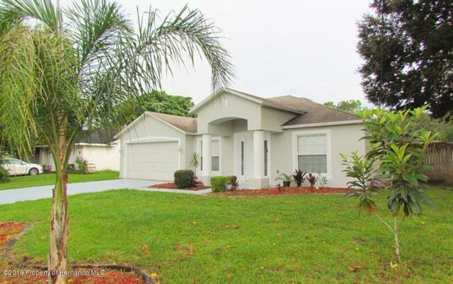 12438 Montego Street, Spring Hill, FL 34609 (MLS #2194909) :: The Hardy Team - RE/MAX Marketing Specialists