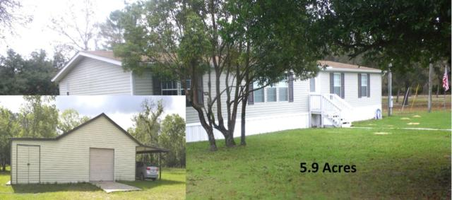12523 Kanawha Drive, Weeki Wachee, FL 34614 (MLS #2195002) :: The Hardy Team - RE/MAX Marketing Specialists