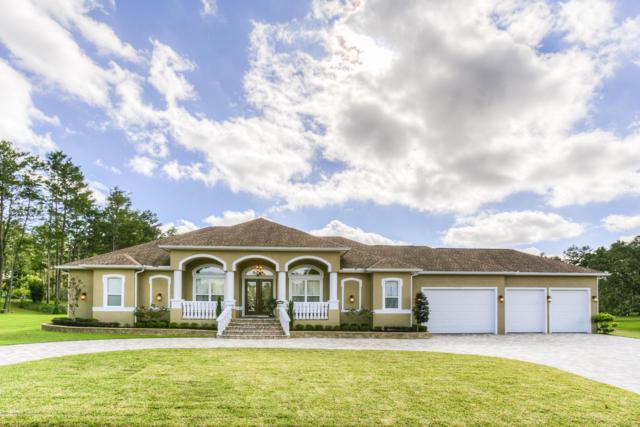 9553 Whisper Ridge Trail, Weeki Wachee, FL 34613 (MLS #2196963) :: The Hardy Team - RE/MAX Marketing Specialists