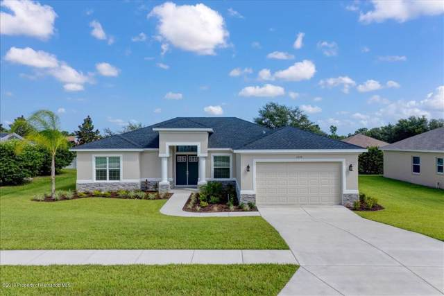 13129 Linzia Lane, Spring Hill, FL 34609 (MLS #2198391) :: The Hardy Team - RE/MAX Marketing Specialists