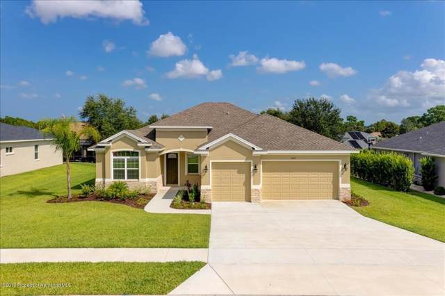 13147 Linzia Lane, Spring Hill, FL 34609 (MLS #2198392) :: The Hardy Team - RE/MAX Marketing Specialists