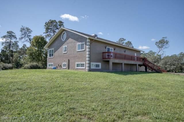 9428 Bluebird Avenue, Weeki Wachee, FL 34613 (MLS #2212427) :: Premier Home Experts