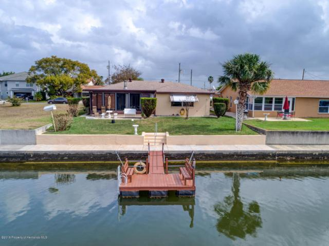 4385 5th Isle Drive, Hernando Beach, FL 34607 (MLS #2190106) :: The Hardy Team - RE/MAX Marketing Specialists