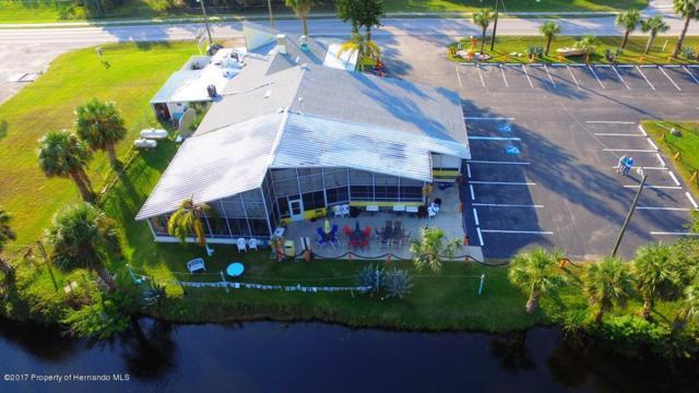4054 Shoal Line Boulevard, Hernando Beach, FL 34607 (MLS #2188146) :: The Hardy Team - RE/MAX Marketing Specialists